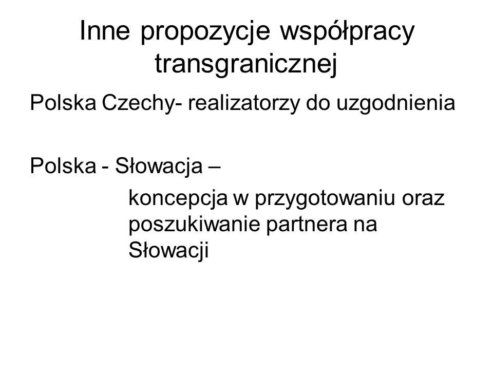 Inne propozycje współpracy transgranicznej Polska Czechy- realizatorzy do uzgodnienia Polska - Słowacja – koncepcja w przygotowaniu oraz poszukiwanie partnera na Słowacji