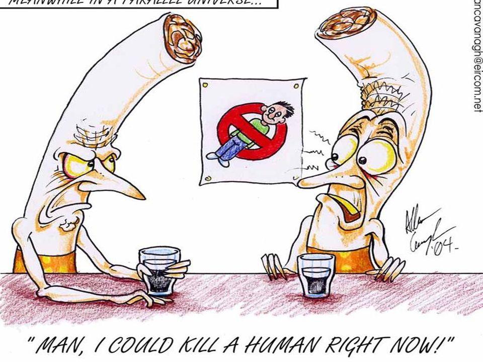 ¾ palaczy żyje w krajach takich jak : Chiny, Indie, Indonezja, Bangladesz, USA, Brazylia, Niemcy, Rosja i Turcja.