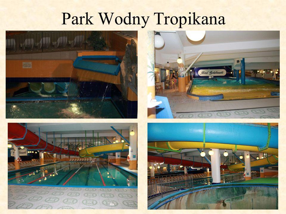 Park Wodny Tropikana