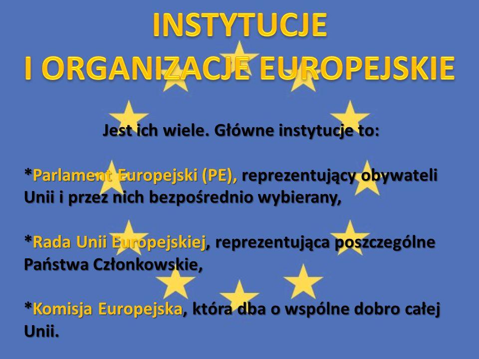 Jest ich wiele. Główne instytucje to: *Parlament Europejski (PE), reprezentujący obywateli Unii i przez nich bezpośrednio wybierany, *Rada Unii Europe