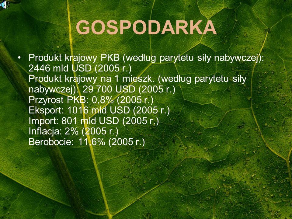GOSPODARKA Produkt krajowy PKB (według parytetu siły nabywczej): 2446 mld USD (2005 r.) Produkt krajowy na 1 mieszk. (według parytetu siły nabywczej):