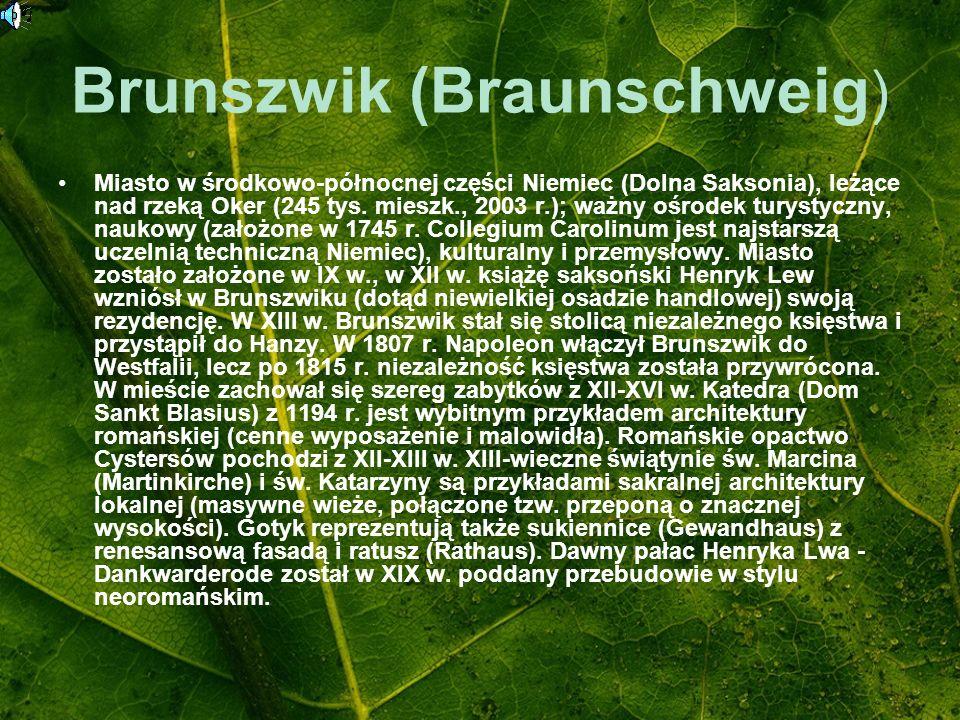 Brunszwik (Braunschweig ) Miasto w środkowo-północnej części Niemiec (Dolna Saksonia), leżące nad rzeką Oker (245 tys. mieszk., 2003 r.); ważny ośrode