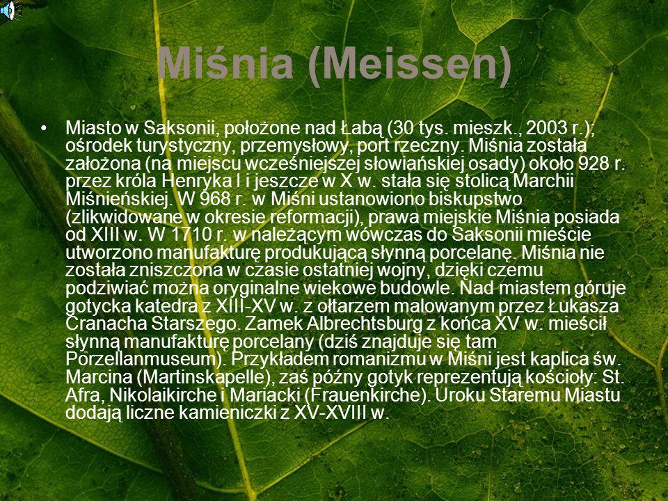 Miśnia (Meissen) Miasto w Saksonii, położone nad Łabą (30 tys. mieszk., 2003 r.); ośrodek turystyczny, przemysłowy, port rzeczny. Miśnia została założ
