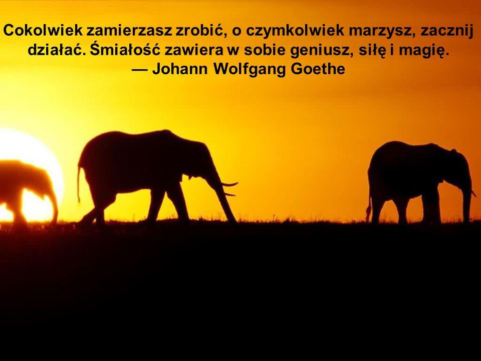 Cokolwiek zamierzasz zrobić, o czymkolwiek marzysz, zacznij działać. Śmiałość zawiera w sobie geniusz, siłę i magię. Johann Wolfgang Goethe