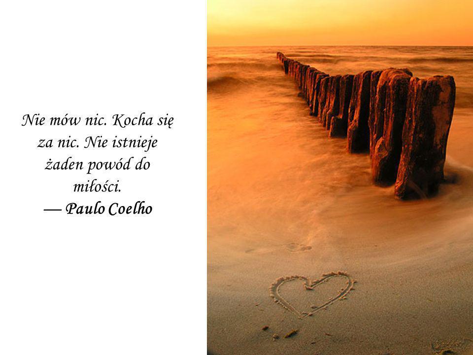 Nie mów nic. Kocha się za nic. Nie istnieje żaden powód do miłości. Paulo Coelho