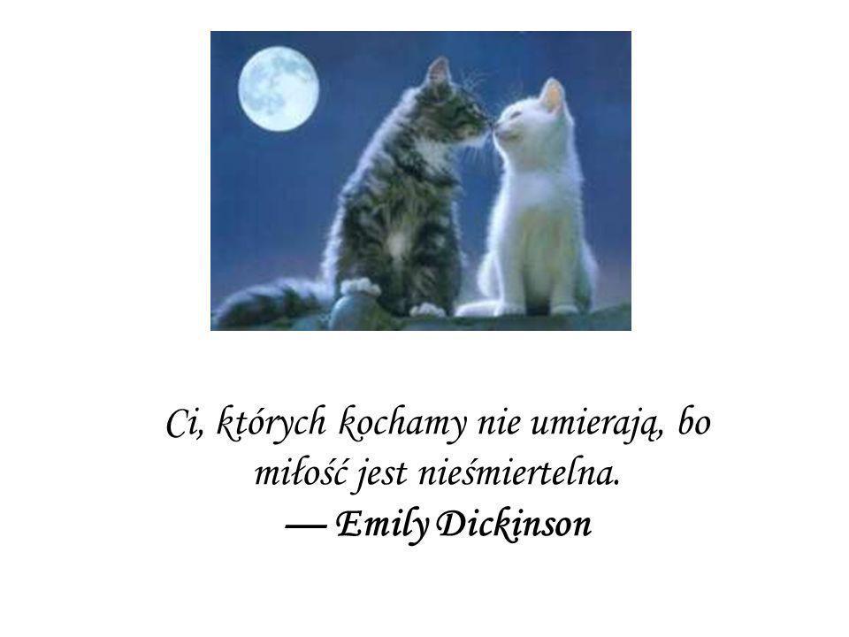 Ci, których kochamy nie umierają, bo miłość jest nieśmiertelna. Emily Dickinson