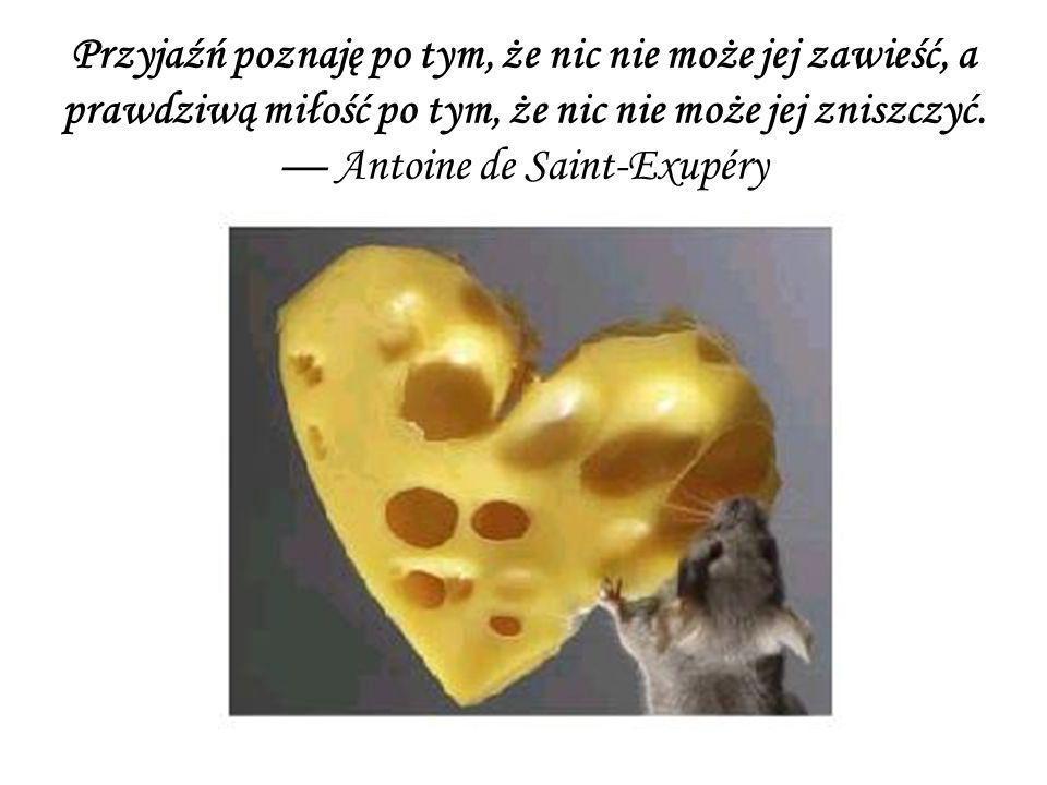 Przyjaźń poznaję po tym, że nic nie może jej zawieść, a prawdziwą miłość po tym, że nic nie może jej zniszczyć. Antoine de Saint-Exupéry