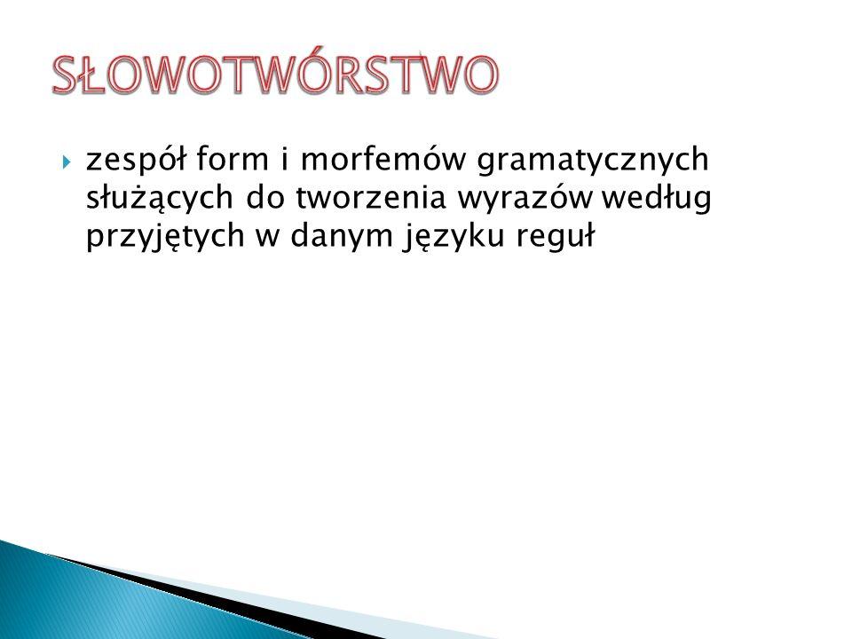 zespół form i morfemów gramatycznych służących do tworzenia wyrazów według przyjętych w danym języku reguł