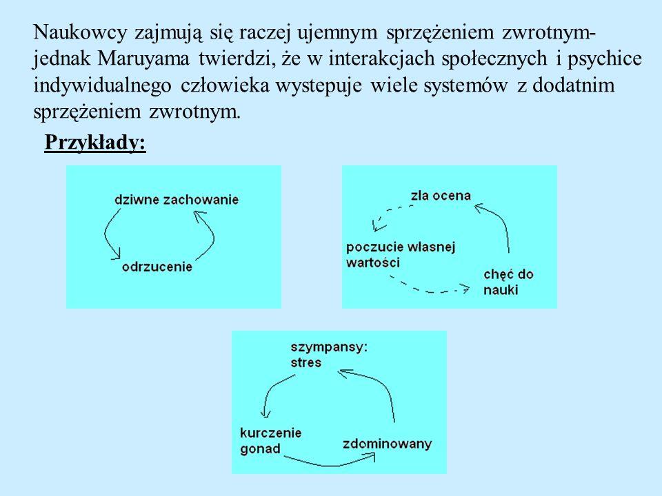 Równowaga społeczna- dynamika przyjaźni i wrogości (Antal, Krapivsky, Redner, 2006) Jak można wyeliminować niezrównoważone trójki (trójki zawierające jedną albo trzy nieprzyjazne linie).