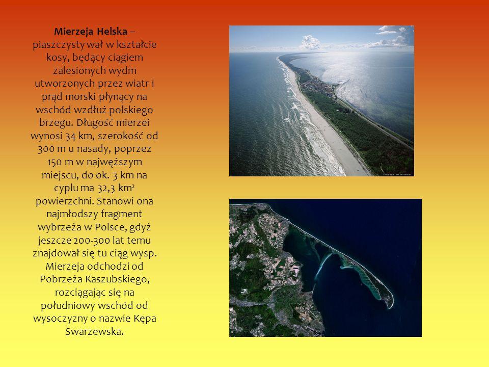 Mierzeja Helska – piaszczysty wał w kształcie kosy, będący ciągiem zalesionych wydm utworzonych przez wiatr i prąd morski płynący na wschód wzdłuż polskiego brzegu.