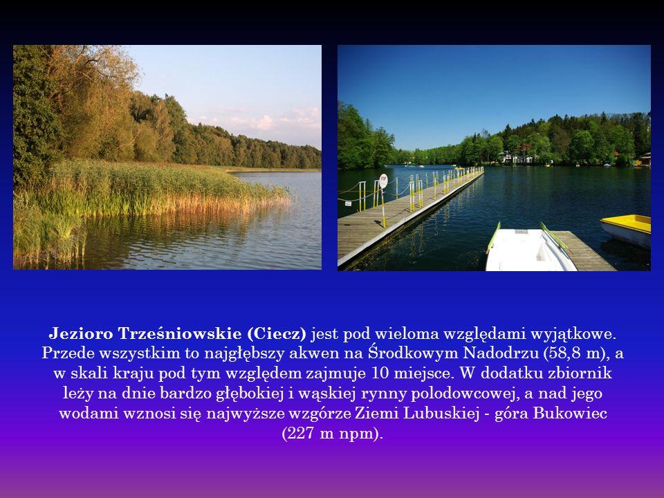 Jezioro Trześniowskie (Ciecz) jest pod wieloma względami wyjątkowe.