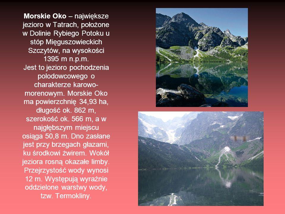 Morskie Oko – największe jezioro w Tatrach, położone w Dolinie Rybiego Potoku u stóp Mięguszowieckich Szczytów, na wysokości 1395 m n.p.m.