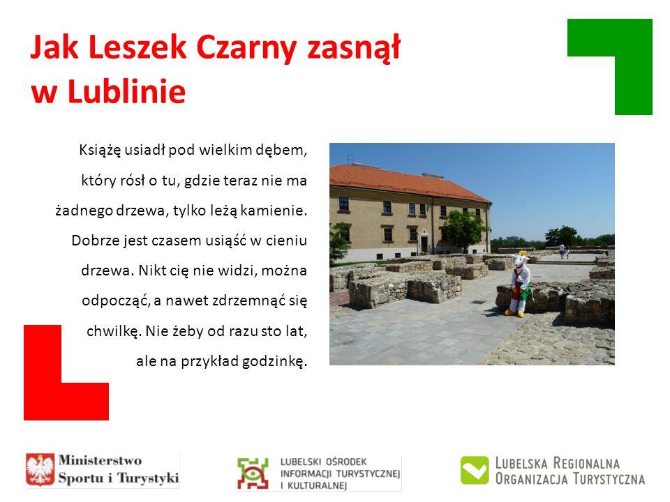 Jak Leszek Czarny zasnął w Lublinie Książę usiadł pod wielkim dębem, który rósł o tu, gdzie teraz nie ma żadnego drzewa, tylko leżą kamienie. Dobrze j