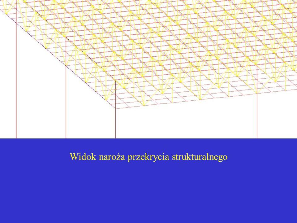 Przygotowanie danych – program AutoCAD W systemie LINUX nie znaleziono dotychczas bezpłatnych programów typu CAD, umożliwiających generowanie złożonych modeli konstrukcji trójwymiarowych.