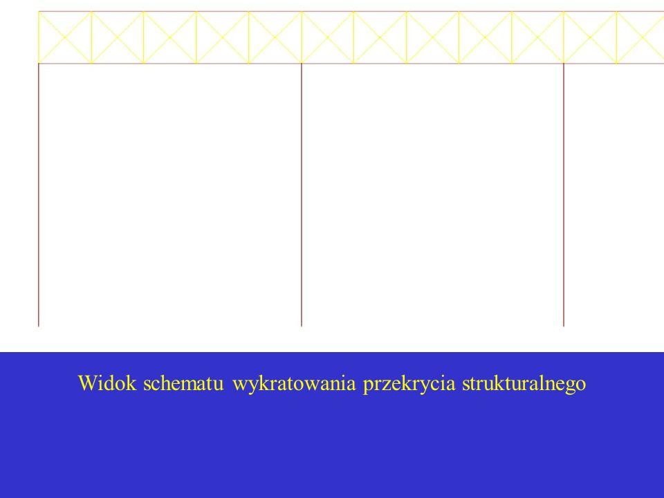 Widok schematu wykratowania przekrycia strukturalnego