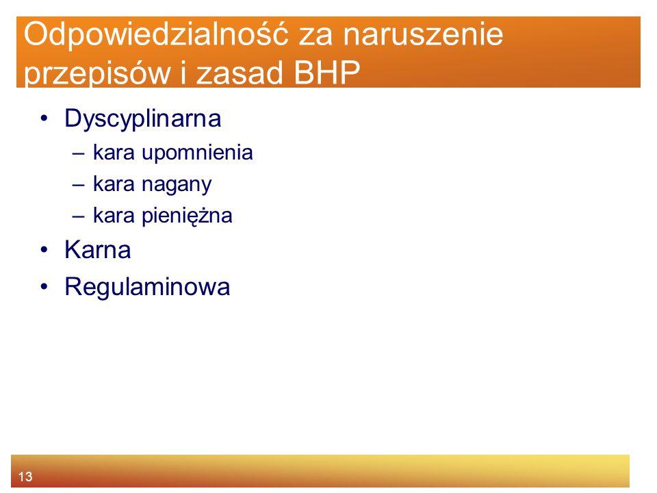 12 Agenda Istota BHP Główne źródła prawa pracy Prawa i obowiązki pracownika oraz pracodawcy Nadzór i kontrola warunków pracy Odpowiedzialność za narus