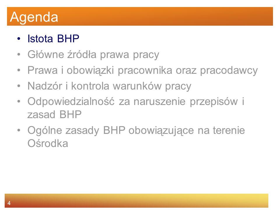 3 Agenda Istota BHP Główne źródła prawa pracy Prawa i obowiązki pracownika oraz pracodawcy Nadzór i kontrola warunków pracy Odpowiedzialność za narusz