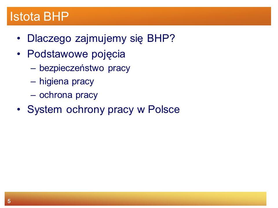 4 Agenda Istota BHP Główne źródła prawa pracy Prawa i obowiązki pracownika oraz pracodawcy Nadzór i kontrola warunków pracy Odpowiedzialność za narusz