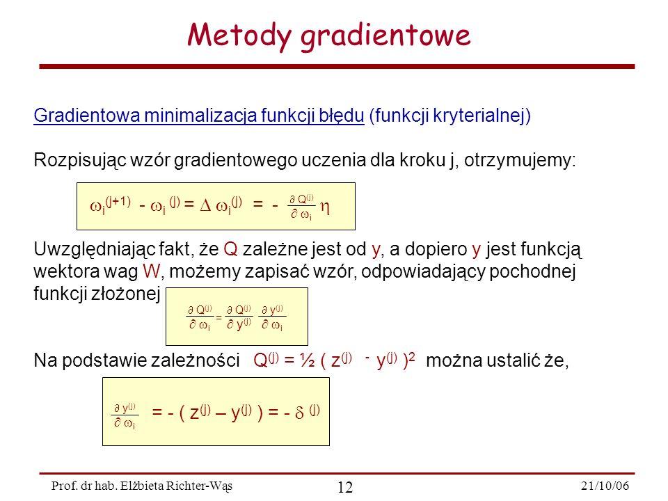 21/10/06 12 Prof. dr hab. Elżbieta Richter-Wąs Gradientowa minimalizacja funkcji błędu (funkcji kryterialnej) Rozpisując wzór gradientowego uczenia dl