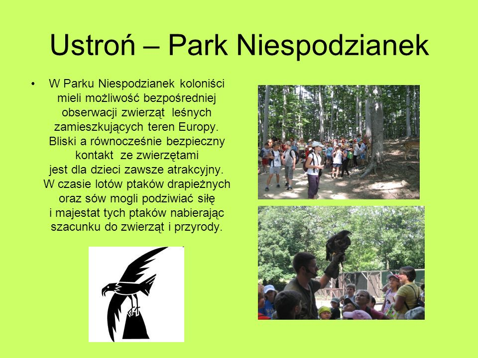 Ustroń – Park Niespodzianek W Parku Niespodzianek koloniści mieli możliwość bezpośredniej obserwacji zwierząt leśnych zamieszkujących teren Europy.