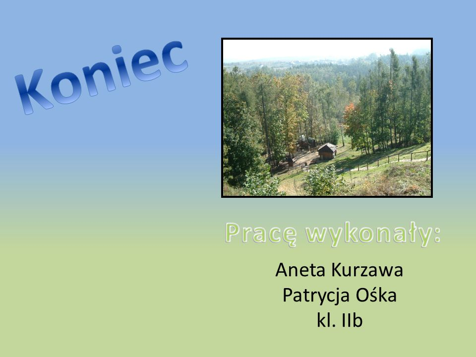 Aneta Kurzawa Patrycja Ośka kl. IIb