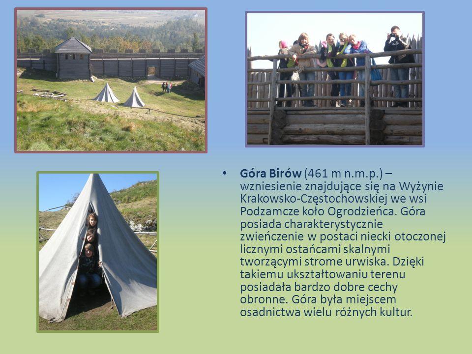 Góra Birów (461 m n.m.p.) – wzniesienie znajdujące się na Wyżynie Krakowsko-Częstochowskiej we wsi Podzamcze koło Ogrodzieńca.