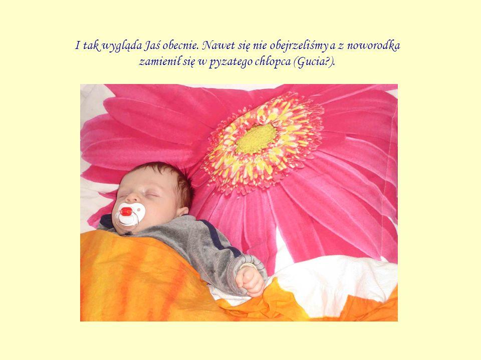 I tak wygląda Jaś obecnie. Nawet się nie obejrzeliśmy a z noworodka zamienił się w pyzatego chłopca (Gucia?).