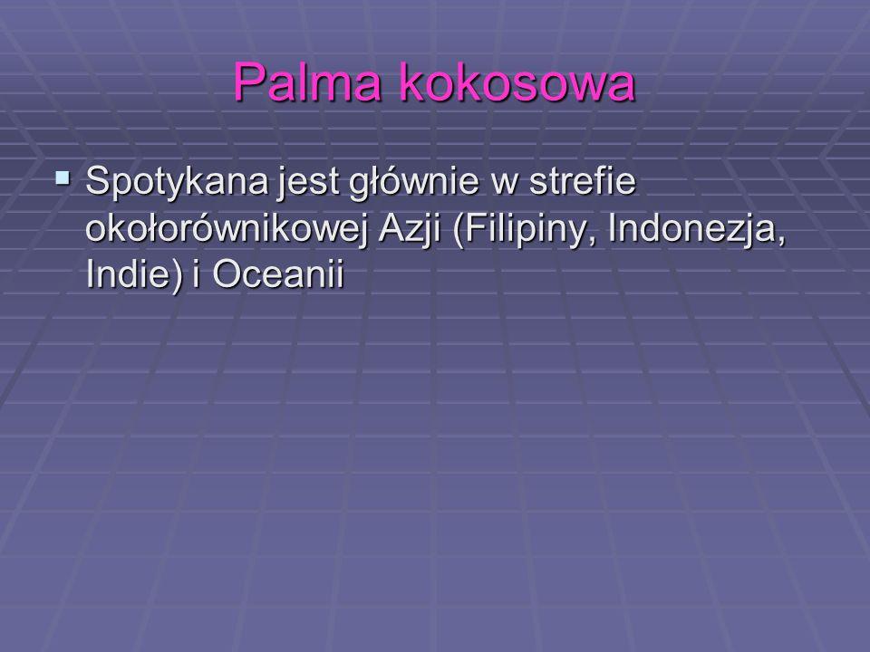 Palma kokosowa Spotykana jest głównie w strefie okołorównikowej Azji (Filipiny, Indonezja, Indie) i Oceanii Spotykana jest głównie w strefie okołorówn
