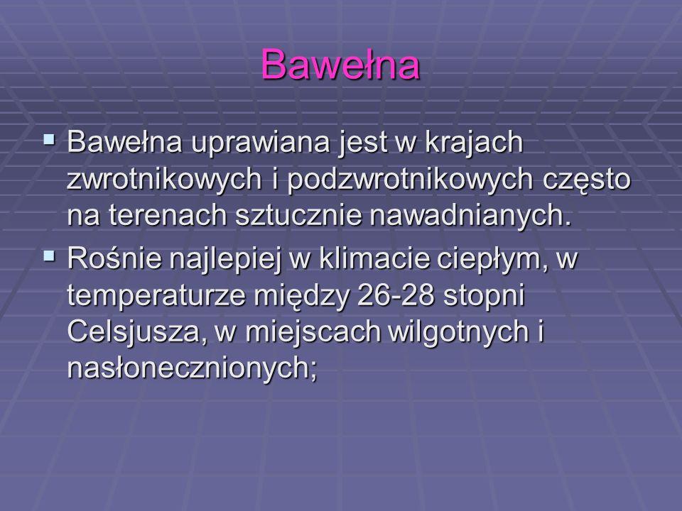 Bawełna Bawełna uprawiana jest w krajach zwrotnikowych i podzwrotnikowych często na terenach sztucznie nawadnianych. Bawełna uprawiana jest w krajach