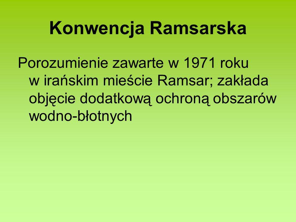 Konwencja Ramsarska Porozumienie zawarte w 1971 roku w irańskim mieście Ramsar; zakłada objęcie dodatkową ochroną obszarów wodno-błotnych