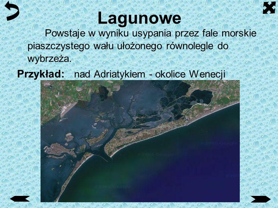 Mierzejowe Przykład: piaszczysty wał na południowo-wschodnim brzegu Zatoki Gdańskiej.