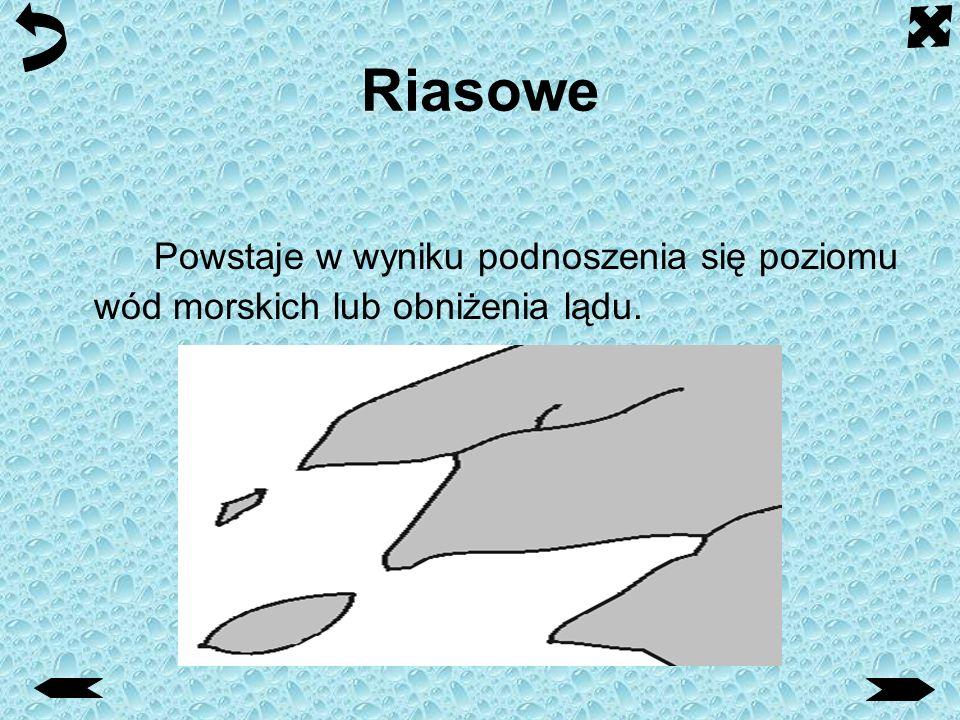 Mierzejowe Mierzeja - przedłużenie zasadniczego lądu stałego, lub jego półwyspu, usypane przez morskie fale przybrzeżne, tworzące piaszczystą barierę oddzielającą zalew lub zatokę od morza.