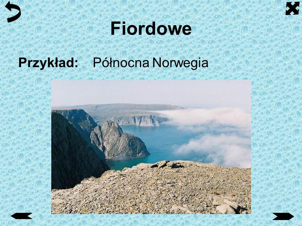 Namorzynowe Typ niskiego wybrzeża porośniętego słonolubnymi lasami namorzynowymi, o dużej amplitudzie pływów, charakterystyczny dla strefy międzyzwrotnikowej.