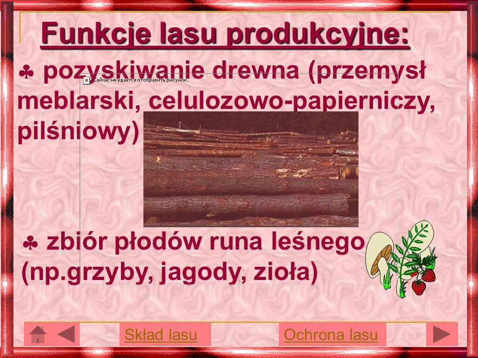 Funkcje lasu produkcyjne: pozyskiwanie drewna (przemysł meblarski, celulozowo-papierniczy, pilśniowy) zbiór płodów runa leśnego (np.grzyby, jagody, zi
