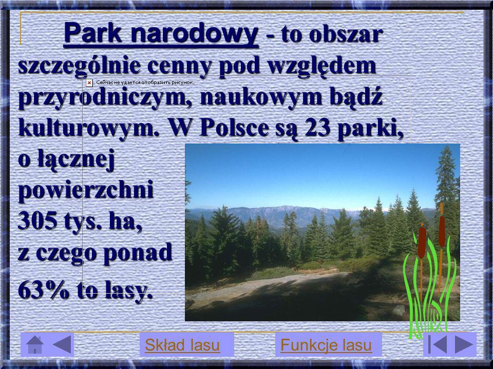 Park narodowy narodowy - to obszar szczególnie cenny pod względem przyrodniczym, naukowym bądź kulturowym. W Polsce są 23 parki, o łącznej powierzchni