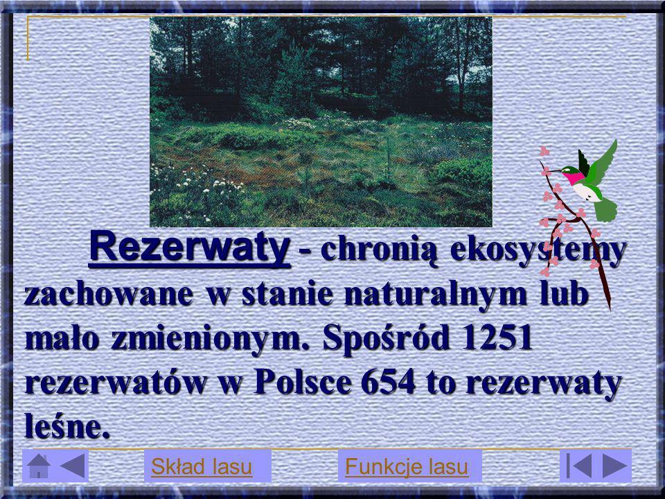 Rezerwaty - chronią ekosystemy zachowane w stanie naturalnym lub mało zmienionym. Spośród 1251 rezerwatów w Polsce 654 to rezerwaty leśne. Rezerwaty -