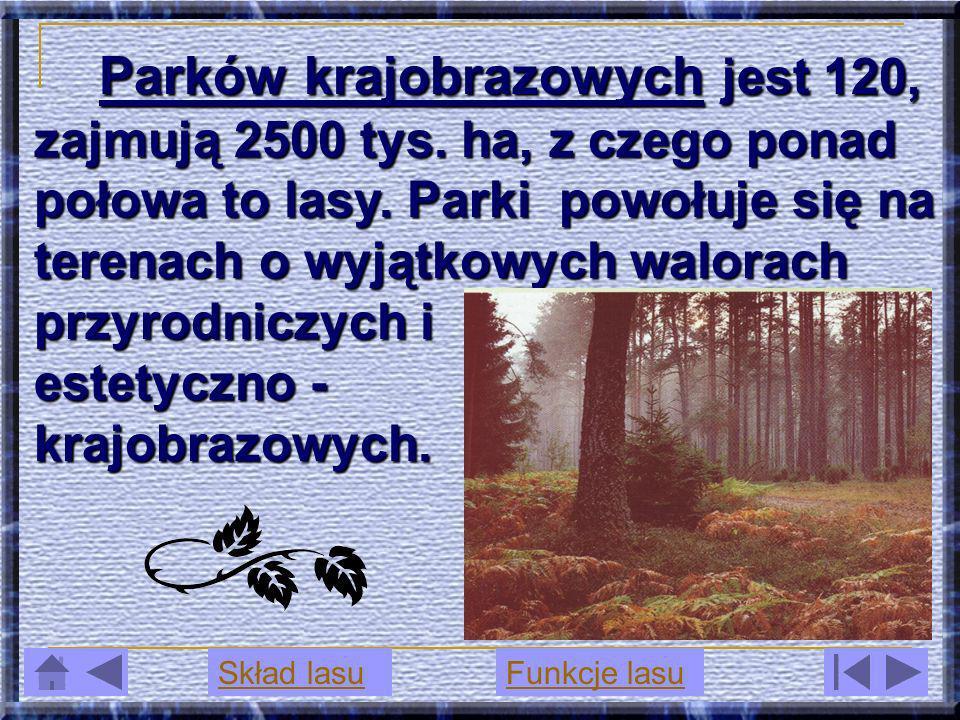 Parków krajobrazowych krajobrazowych jest 120, zajmują 2500 tys. ha, z czego ponad połowa to lasy. Parki powołuje się na terenach o wyjątkowych walora