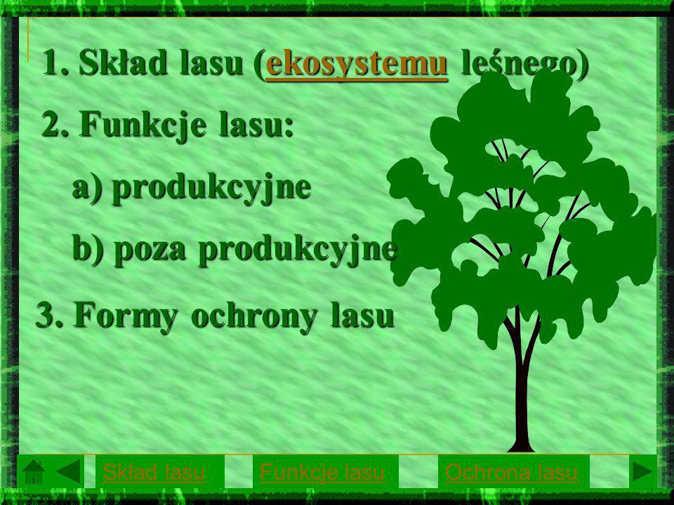 1. Skład lasu (ekosystemu leśnego) ekosystemu 2. Funkcje lasu: a) produkcyjne b) poza produkcyjne 3. Formy ochrony lasu Skład lasuFunkcje lasuOchrona
