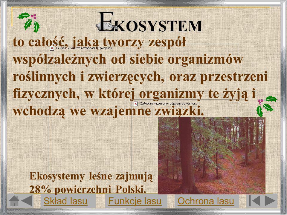 KOSYSTEM to całość, jaką tworzy zespół współzależnych od siebie organizmów roślinnych i zwierzęcych, oraz przestrzeni fizycznych, w której organizmy t