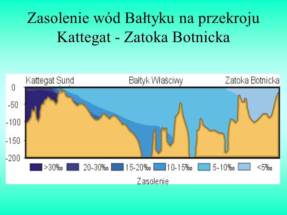 Zasolenie wód Bałtyku na przekroju Kattegat - Zatoka Botnicka