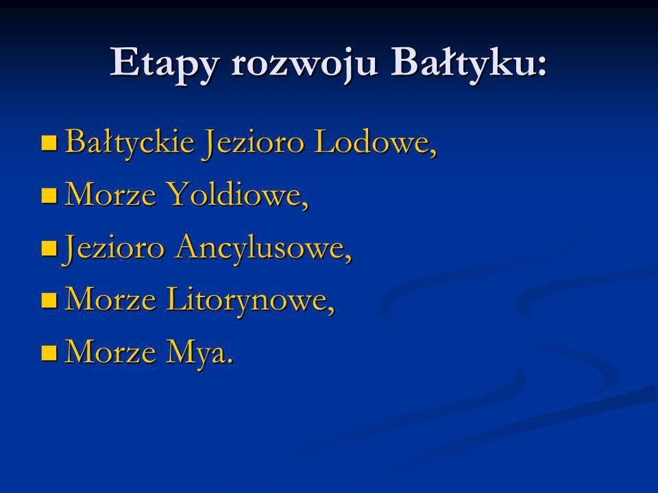 Etapy rozwoju Bałtyku: Bałtyckie Jezioro Lodowe, Bałtyckie Jezioro Lodowe, Morze Yoldiowe, Morze Yoldiowe, Jezioro Ancylusowe, Jezioro Ancylusowe, Mor