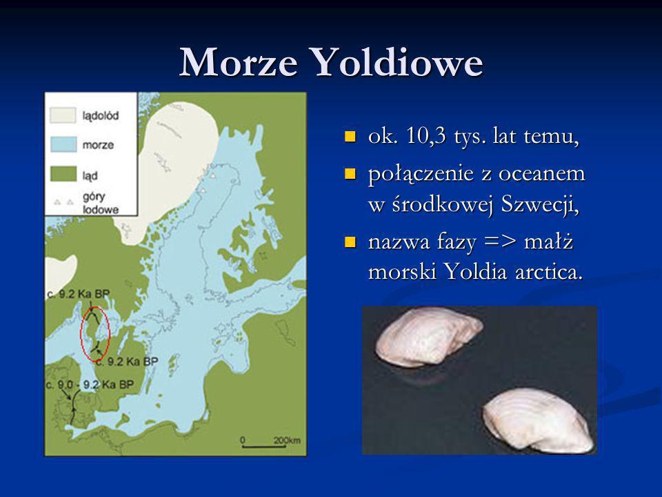 Morze Yoldiowe ok. 10,3 tys. lat temu, połączenie z oceanem w środkowej Szwecji, nazwa fazy => małż morski Yoldia arctica.