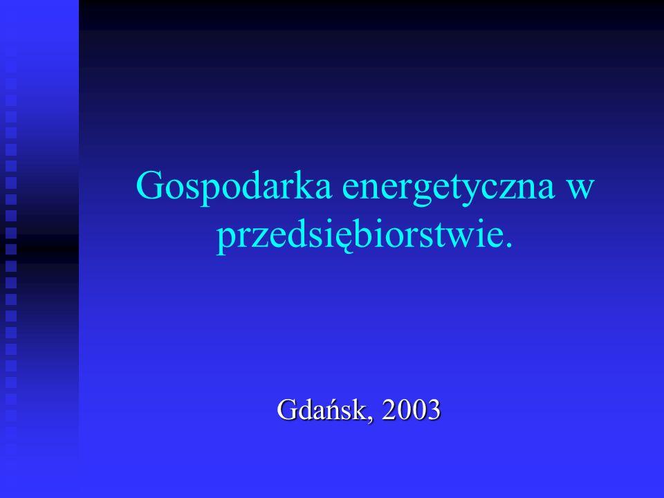 Gospodarka energetyczna w przedsiębiorstwie. Gdańsk, 2003