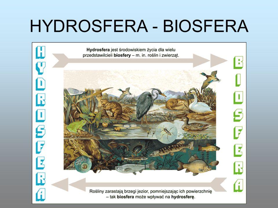 HYDROSFERA - BIOSFERA