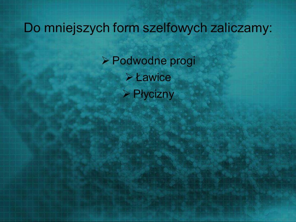 Do mniejszych form szelfowych zaliczamy: Podwodne progi Ławice Płycizny