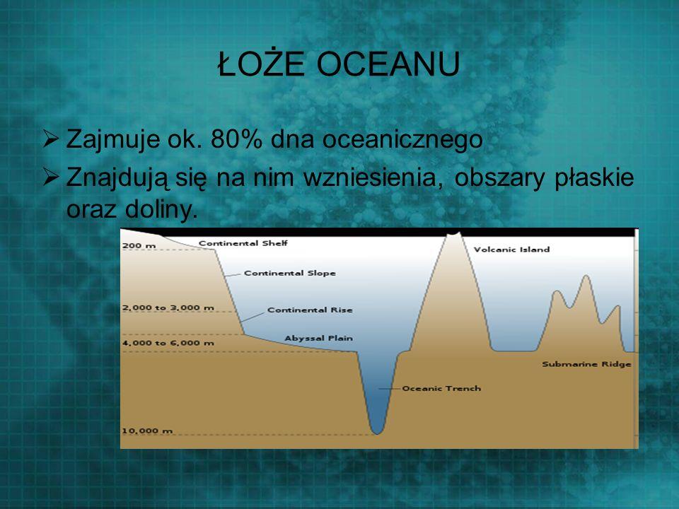 ŁOŻE OCEANU Zajmuje ok. 80% dna oceanicznego Znajdują się na nim wzniesienia, obszary płaskie oraz doliny.