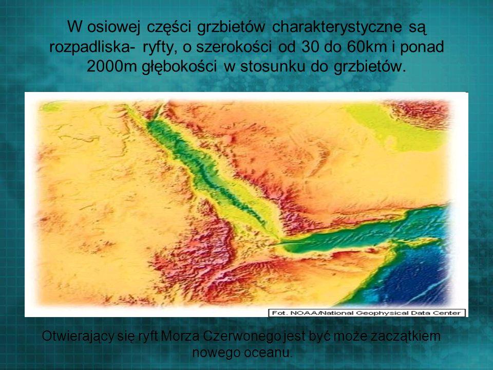 W osiowej części grzbietów charakterystyczne są rozpadliska- ryfty, o szerokości od 30 do 60km i ponad 2000m głębokości w stosunku do grzbietów. Otwie