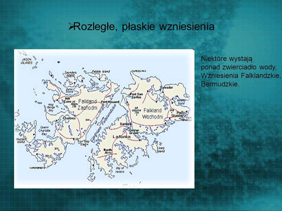 Rozległe, płaskie wzniesienia Niektóre wystają ponad zwierciadło wody, Wzniesienia Falklandzkie, Bermudzkie.