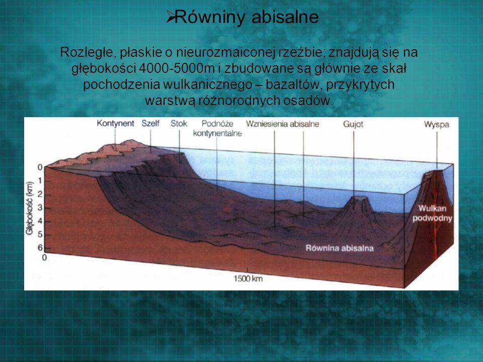 Równiny abisalne Rozległe, płaskie o nieurozmaiconej rzeźbie; znajdują się na głębokości 4000-5000m i zbudowane są głównie ze skał pochodzenia wulkani
