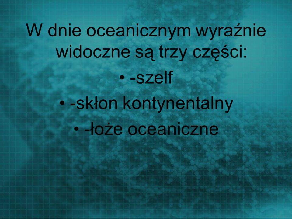 W dnie oceanicznym wyraźnie widoczne są trzy części: -szelf -skłon kontynentalny -łoże oceaniczne